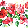Red Bouganvillia by Karin  Dawn Kelshall- Best