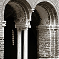 Red Brick Arches Black White by Marilyn Hunt