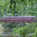 Red Bridge by Heather Green