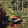 Red Bridge Portrait - Duke Gardens by Paulette B Wright