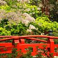 Red Bridge Springtime by James Eddy