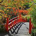 Red Bridge With Shadows by Nareeta Martin