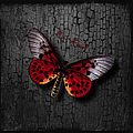 Red Butterfly by Maria Astedt