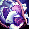 Red Cabbage In Basket by Diana Davenport