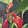 Red Cannas by Deleas Kilgore