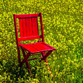 Red Chair Amoung Wildflowers by Garry Gay