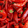 Red Chile Peppers  by John  Mitchell
