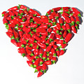 Red Chillie Heart by Helen Northcott