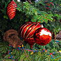 Red Christmas Balls by Rich Walter