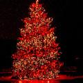 Red Christmas Tree by Nick Zelinsky