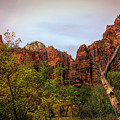 Red Cliffs Mountains Zion National Park Utah Usa by Chuck Kuhn