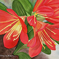 Red Clivias - Watercolor by Hao Aiken