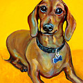 Red Dachshund - Tigger Smiles by Rebecca Korpita