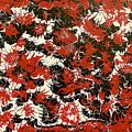 Red Devil U - V1cfs100 by Keith Elliott