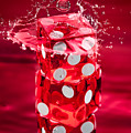 Red Dice Splash by Steve Gadomski