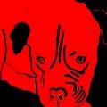 Red Dog by Karen Harding