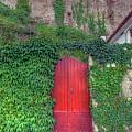 Red Door by Nadia Sanowar
