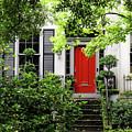 Red Door by Nicholas Blackwell