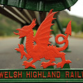 Red Dragon Symbol At Welsh Highland Railway Station, by Keith Morris