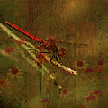 Red Dragonfly Dining by Bonnie Bruno