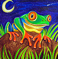 Red-eyed Tree Frog And Starry Night by Nick Gustafson