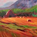 Red Farm by Heidi Vee Wood