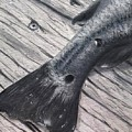 Red Fish Painted Black by Katie Monzel