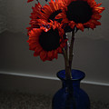 Red Flower Blue Vase by Whispering Peaks Photography