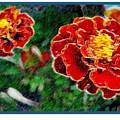 Red Flower In Autumn by Joan  Minchak