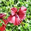 Red Flower by Jeelan Clark