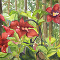 Red Flowers On The Deck by Jeneane Mixon