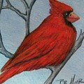 Red Fluff by Patricia R Moore