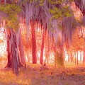 Red Forest by Janal Koenig