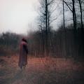 Red Forest by Nikolai Burlaka
