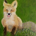 Red Fox 2 by Alicia Fowler