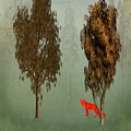 Red Fox Forest by Movie Poster Prints