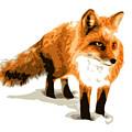Red Fox In Winter by DB Artist