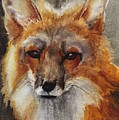 Red Fox by June Rollins