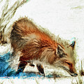 Red Fox Painted Series by Geraldine Scull