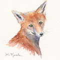 Red Fox Portrait by Marsha Karle
