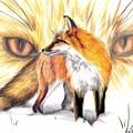 Red Fox by Scarlett Royal