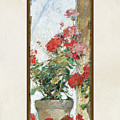Red Geraniums Against A Sunny Wall by Audrey Jeanne Roberts