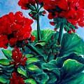 Red Geraniums by Jennifer Christenson