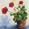 Red Geraniums by Torrie Smiley
