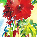 Gerberas Red, White, And Blue by Jacki Kellum