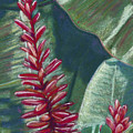 Red Ginger by Patti Bruce - Printscapes