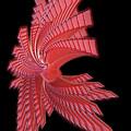 Red Glass Abstract by Ann Garrett
