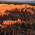 Red Glow Of The Sunrise In Bryce Canyon by Pierre Leclerc Photography