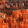 Red Glow On Hoodoos Of Bryce Canyon by Pierre Leclerc Photography