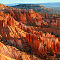 Red Glow On The Hoodoos Of Bryce Canyon by Pierre Leclerc Photography